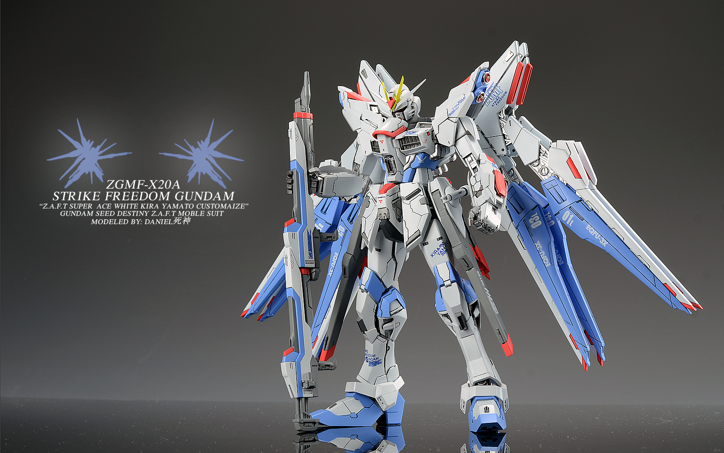 Vicious Project Strike Freedom Gundam Ver.daniel死神: