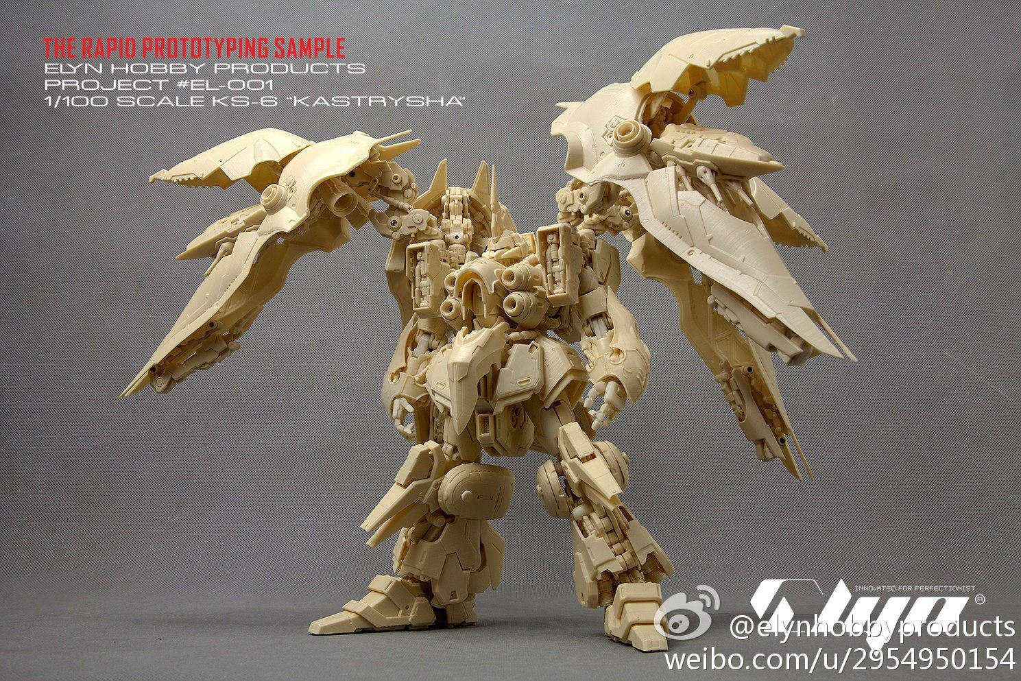 1/100 KS-6 Kastrysha [kshatriya] by Elyn Hobby: Preview No 13 Big or