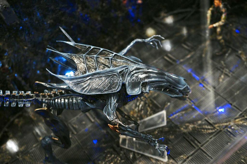 NYCC-2014-NECA-Alien-Queen-004