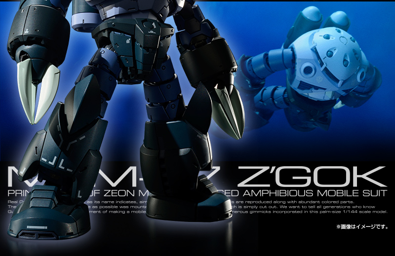 P-Bandai RG 1/144 MSM-07 Mass Production Z'GOK: Orders Start