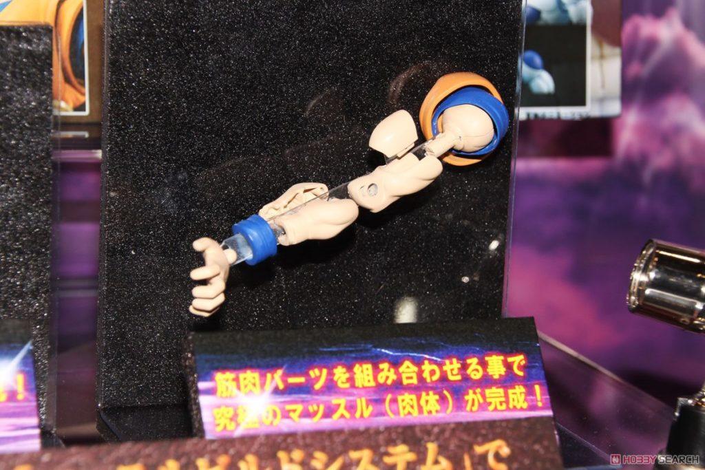 Tokyo_Toy_Show_Blog_16060992