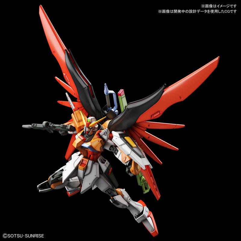 HGCE 1/144 Destiny Gundam Heine Westenfluss Custom