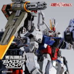 METAL BUILD Aile parts and Launcher parts: images, full info release
