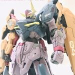 HGBD:R Seltsam custom