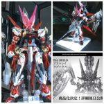 METAL BUILD Gundam Astray Red Dragonics