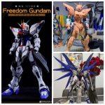 MG 1/100 Freedom Gundam Ver.2.0 Garage Kit