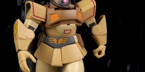 REVIEW P-Bandai ROBOT魂 DOM TROPICAL TEST TYPE ver. A.N.I.M.E.