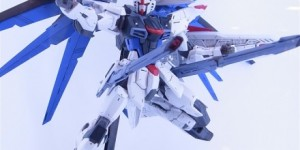 GUNPLA EXPO in UTSUNOMIYA: DENGEKI's PhotoReport. Upcoming GUNPLA, Custom Builds, Dioramas. LINK