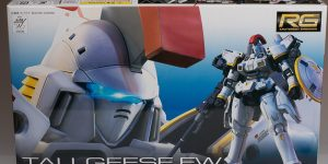 FULL REVIEW RG/144 TALLGEESE EW - many images -